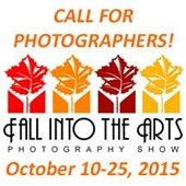 Fall into the Arts 2015