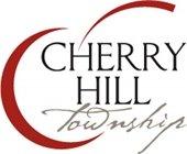 Township logo