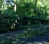 Storm damage briefing