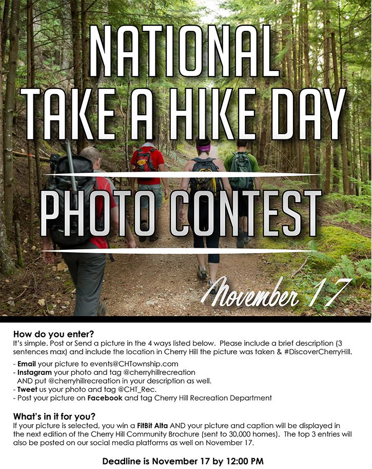 national take a walk day email new