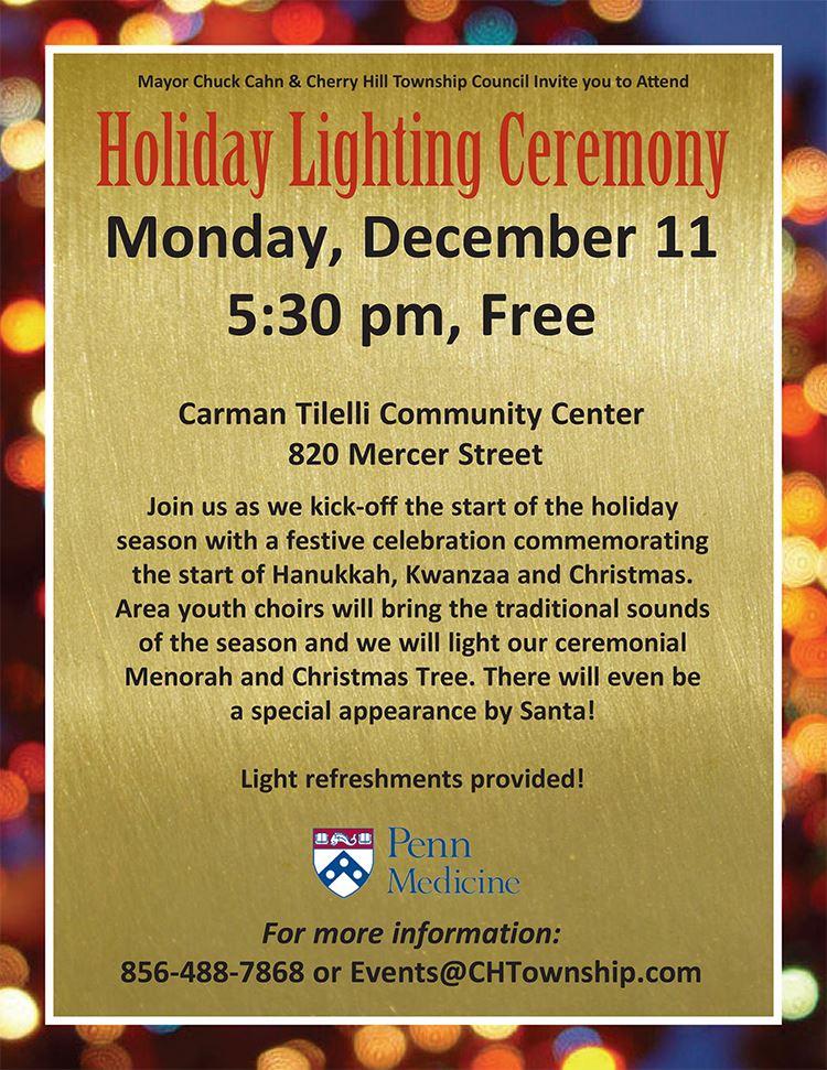 holiday lighting flyer1