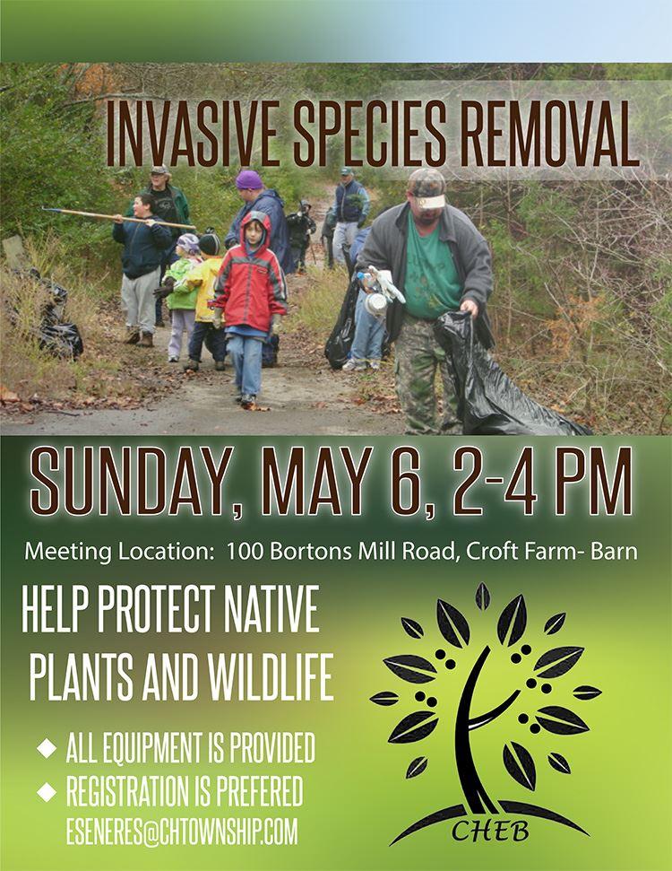 invasive species flyer