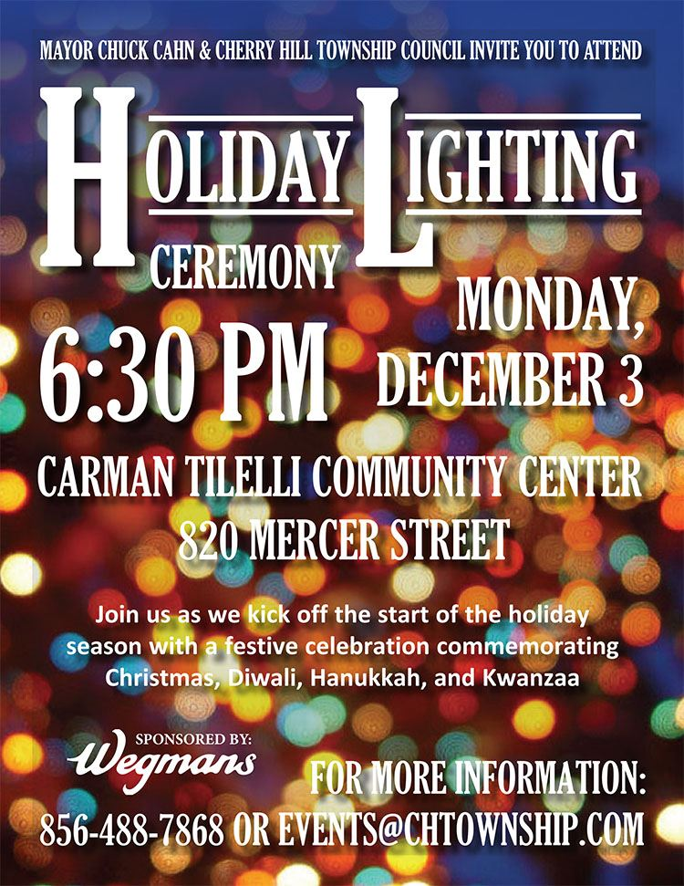 holiday lighting flyer1