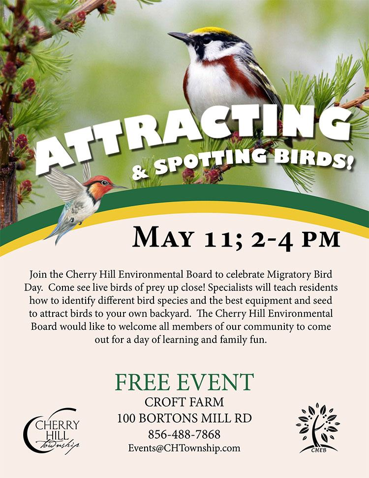 Attracting and spotting birds flyer