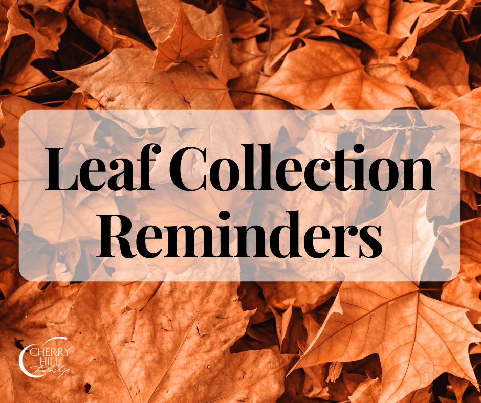 Leaf Collection Reminder