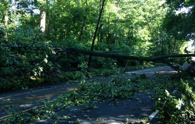 Brace Road storm damage 6-24-15.jpg