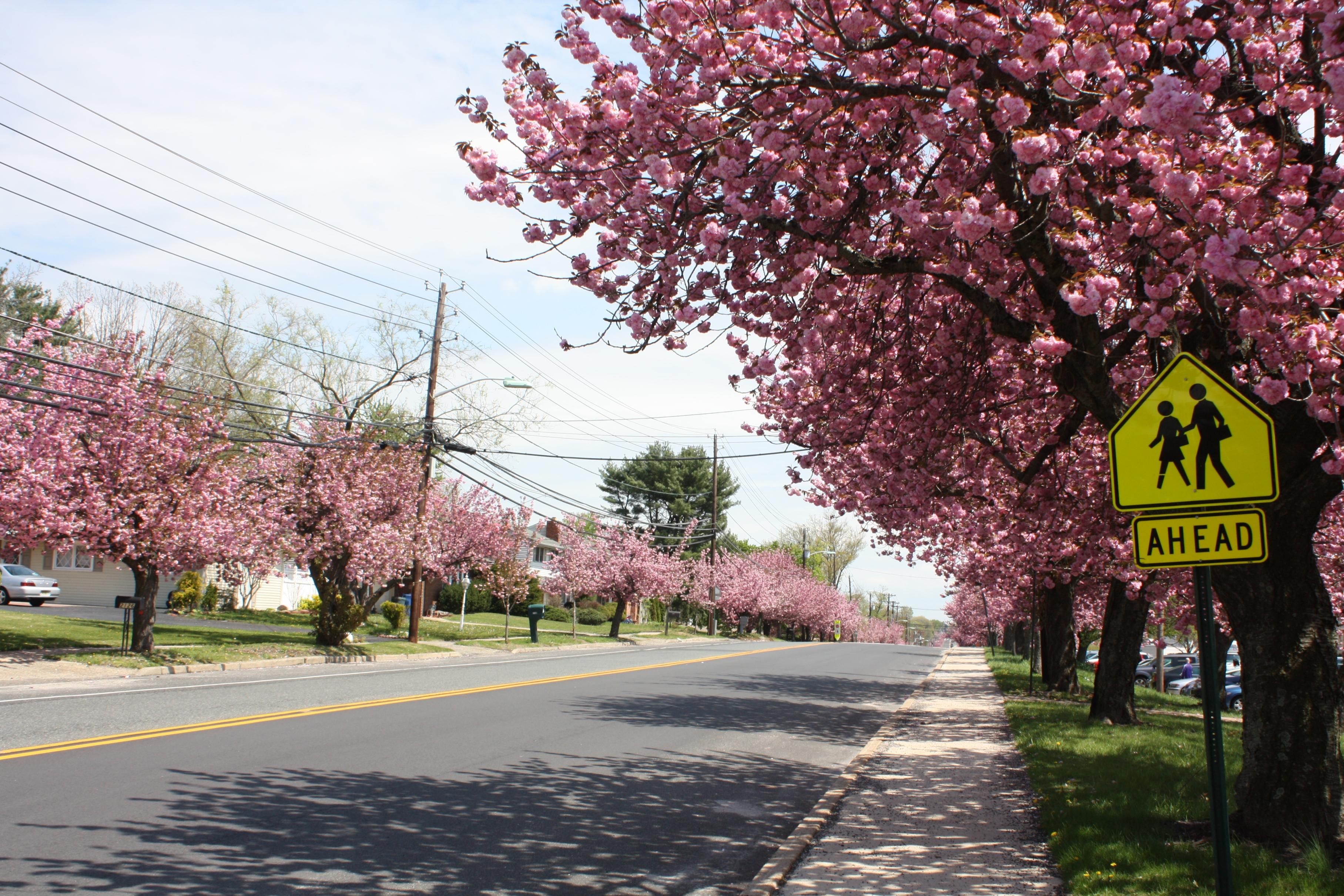 Cherry Hill Township, NJ