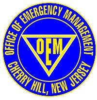 OEM logo for Briefing.jpg