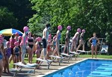 breaststrokes.jpg
